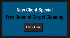 New Client Special Free Room of Carpet Cleaning